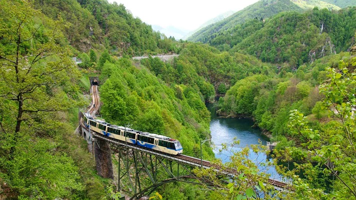 View a train traveling along the track through a lush green forest, Switzerland